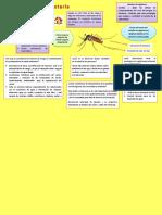 Infografía .docx