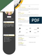 Orange Resume Template-WPS Office
