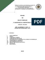 SILABO FINAL CURSO DE SALUD FAMILIAR Y OBSTETRICIA COMUNITARIA II  Y II SEM 2019.pdf · versión 1