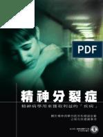 Schizophrenia Chinese Opt