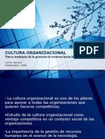 cultura_organizacional