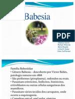 babesia[1]