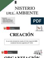 Ministerio Del Ambiente Pro 1