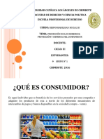 Defensa y Proteccion Del Consumidor Rs