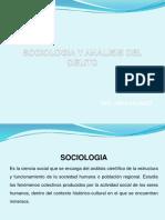 Sociologia y Analisis Del Delito
