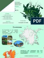 Componentes y Factores, Materia y Energía en Los Ecosistemas