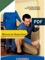 Manual Seguridad4