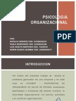 Psicologia Organizacional Coosboy (2)