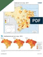 Brasil - População, Cor e Raça