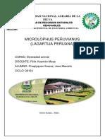 Micro Lop Hus