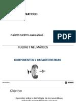 Presentación1 neumaticos