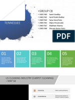 Pro Clean Tennesse Business Process Reengineering