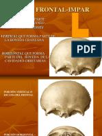 Frontal, Etmoides y Esfenoides.ppt · Versión 1