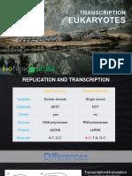 TRANSCRIPTION - EUKARYOT.pptx