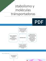 2. Metabolismo y moléculas transportadoras.pdf