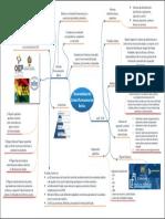 Mapa Mental Politicas públicas Bolivia