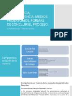 2. Competencia, comparecencia, medios probatorios.pptx