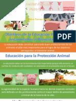 Bienestar Animal Paso 4
