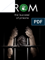 33. the 'Success' of Prisons