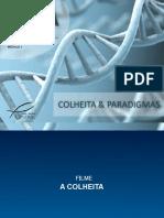 DNA 1 - Paradigmas
