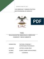 ENSAYO tacticas.docx