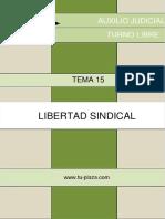 Tema 15 Libertad Sindical