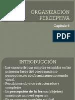 Organización perceptiva UNED