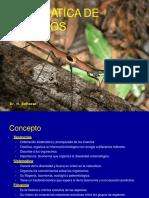 Sistematica de Insectos Parte 1