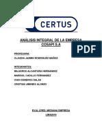 Analisis Integral de La Empresa Cosapi