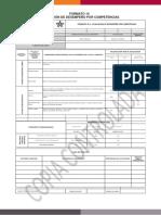 Formato 10 - Evaluación de Desempeño Por Competencias (2)