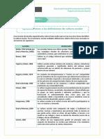 Aproximaciones_a_cultura_escolar (1).pdf