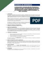TDR Elaboración Del Informe Final de Liquidación