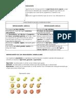 8.reproduccion.pdf