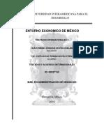 TRATADOS INTERNACIONALES II ACT. 11.docx