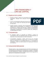 Estructura Financiera y Estructura de Capital