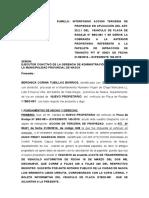Beronica Corina Tubillas Barrios Terceria-De-Propiedad-Papeletas