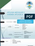 0 Anemia Aplasica