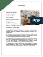 Documento MAROPA.pdf