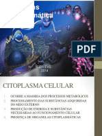 Aula - 04 citosol.ppt