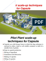pilotplantcapsules-140930004243-phpapp02
