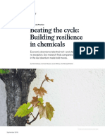 Beating-the-cycle-Building-resilience-in-chemicals.pdf
