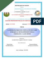 Mémoire de Fin de Formation de Licence sur l'aide public au développement