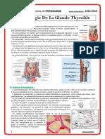40. Physiologie de La Glande Thyroïde
