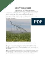 Agronegocio y Los Granos