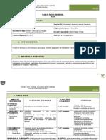 Formato PAI Claudio (1)
