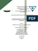 Formulación Proyecto Plantación Hualhuas Avance