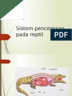 Sistem pencernaan pada reptil.pptx