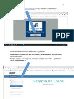 Secuencia Pantallas de Acceso PLATAFORMA-Ingreso Reporte
