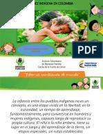 DESNUTRICION INFANTIL INDIGENA COLOMBIAxXXX.pptx