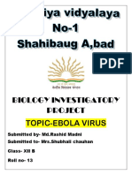 Ebola Virus 2